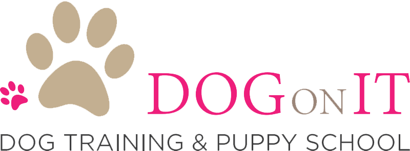 Dog On It – Dog Training and Puppy School